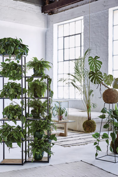 ole-decor-decorating-with-green-room_7